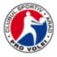 Pro Volei Arad Logo